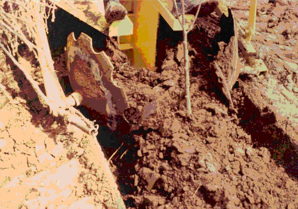 Gvf Tree Planter